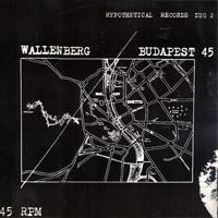 Pochette originale du 45 t Wallenberg/Budapest, par The (Hypothetical) Prophets